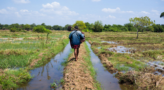 Farmers rely on effective irrigation systems to grow their crops